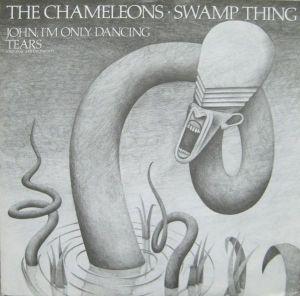 The Chameleons - Swamp Thing (12'')