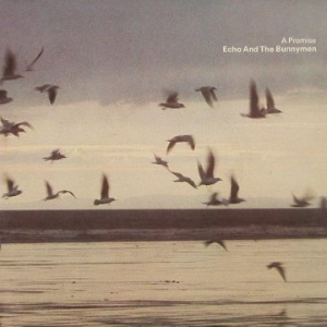 Echo And The Bunnymen - A Promise (7'')