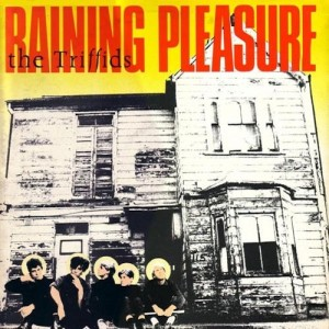 The Triffids - Raining Pleasure (1984)